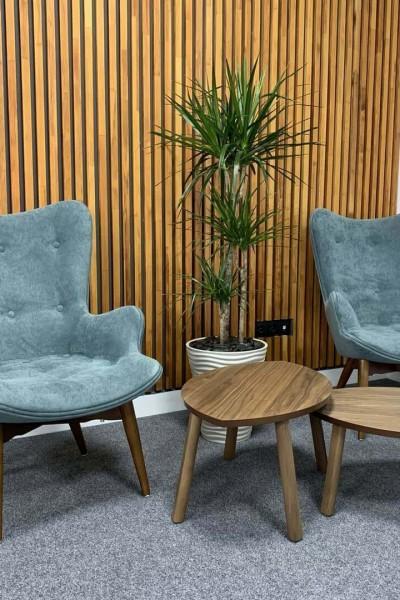 Дизайнерская мебель для офиса.