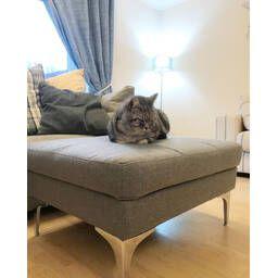 Красный модульный угловой диван Vittorio